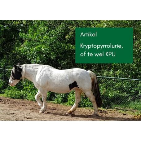 Artikel Kryptopyrrolurie, of te wel KPU