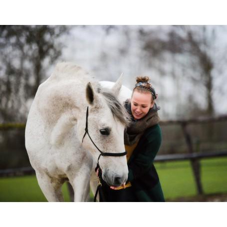 Telefonisch paardencommunicatie consult met Marlies